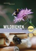 Wildbienen in der Stadt: entdecken, beobachten, schützen
