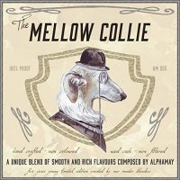 The Mellow Collie