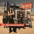 Trucker Punk