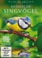 Heimische Singvögel - Eine faszinierende Dokumentation