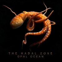 The Hadal Zone